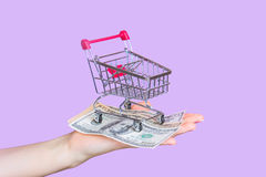 Shopping cart on hand with dollars Stock Photos