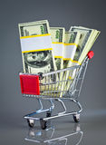 Shopping cart and money Royalty Free Stock Image