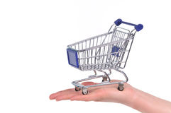 Shopping cart on a palm Stock Image
