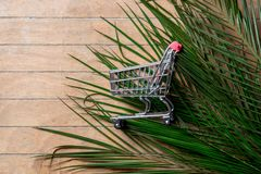Shopping cart and palm tree branch. On wooden background royalty free stock photography