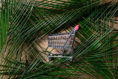 Shopping cart and palm tree branch. On wooden background stock image