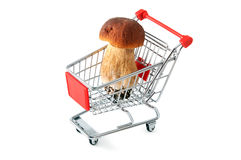 Shopping cart with penny bun on white isolated background Royalty Free Stock Photos