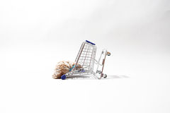 Shopping cart with pet food Royalty Free Stock Images