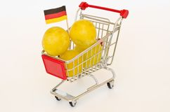 Shopping cart with plum Royalty Free Stock Images