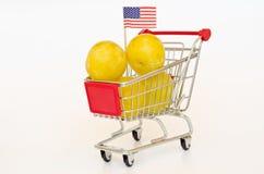 Shopping cart with plum Stock Photos