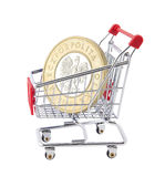 Shopping cart with polish coin Royalty Free Stock Photo
