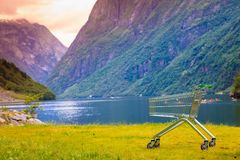 Shopping cart trolley in nature Royalty Free Stock Photo