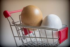 Shopping cart with two chicken eggs Stock Photo