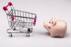 Shopping cart versus pig money box Royalty Free Stock Photos