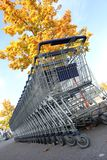 Shopping carts. Many shopping carts in a row are waiting for using Royalty Free Stock Photo