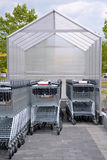 Shopping Carts Stock Photography