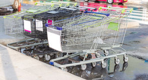 Shopping carts on parking. Stock Images