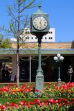 Shopping Center in early spring with ornate street clock and bright tulips stock images