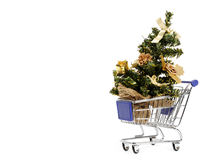 Shopping for Christmas tree Royalty Free Stock Images