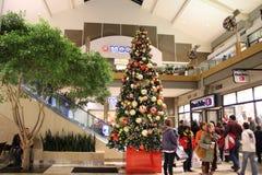 Shopping di festa Fotografie Stock Libere da Diritti