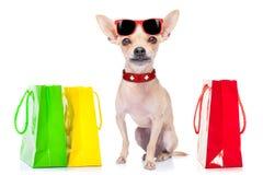 Shopping dog Royalty Free Stock Images