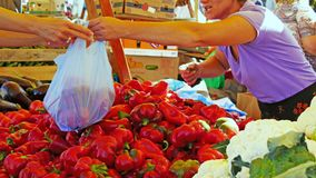 Shopping at the farmers market Royalty Free Stock Photography
