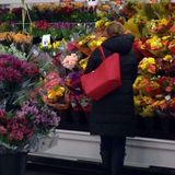 Shopping for flowers Stock Image