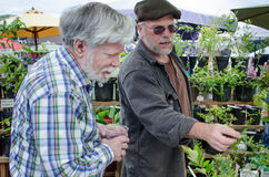 Shopping at an outdoor market. Grower discusses his plants with senior male at an outdoor market at Friday Harbor on San Juan Island Royalty Free Stock Photos