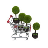 Shopping for Renewable Resources Stock Image