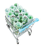 Shopping trolley with euro banknotes isolated. Shopping trolley with rolls from euro banknotes isolated on white background Royalty Free Stock Image