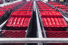 Shopping Trolleys Stock Photography