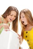 Shopping. Two beautiful girl with bag Royalty Free Stock Photo