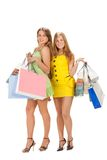 Shopping. Two beautiful girl with bag Royalty Free Stock Image