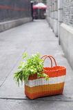 Shopping Vegetalbe Royalty Free Stock Photography