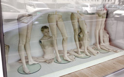 Shopping window with parts of undressed fashion dolls Stock Images