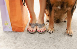 Shopping With Man S Best Friend Royalty Free Stock Photos