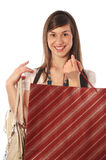 Shopping woman. Young cute woman holding several shopping bags Stock Images