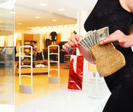 Shopping woman Stock Image