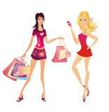 Shopping woman, vector illustration Stock Images