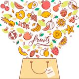 Shoppingkorg med frukt i vektor Illustrationen för platsen, utskriften och designen vektor illustrationer