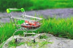 Shoppingvagnen i supermarket där är två leksakbilar Royaltyfri Foto