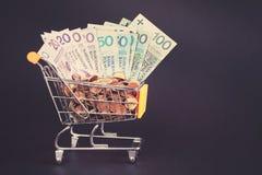 Shoppingvagnen som fylls med den polska zlotyen, myntar och räkningar Royaltyfri Foto