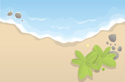 Shore. Empty shore with coconut trees and rocks and a starfish royalty free illustration