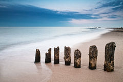 On shore Royalty Free Stock Image