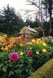 Shore Acres State Park, Oregon royalty free stock photo