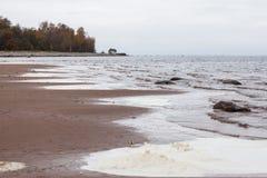 Shore of the Baltic sea fall beach surf waves foam Stock Photo