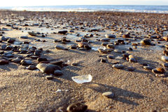 The shore of the Baltic Sea Stock Images