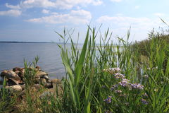 Shore of the Bay of Puck, Poland Stock Photography