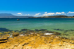 The shore of a beautiful beach in Tasmania, Australia. With clear water and a blue sky Royalty Free Stock Photos