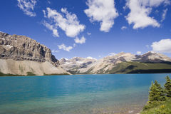 Shore of the bow lake Royalty Free Stock Image