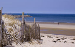 Shore of Cape Cod. Early spring at Cape cod Stock Image