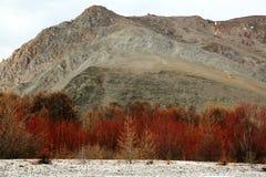 Free Shore Cape Sunduki On Lake Baikal In March Royalty Free Stock Photos - 84571508