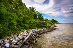 The shore of the Chesapeake Bay at Downs Park, in Pasadena, Mary stock image