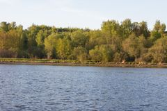 On the shore of a circular lake. The lake and green forest Royalty Free Stock Photography