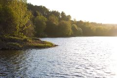 On the shore of a circular lake. The lake and green forest Stock Photo